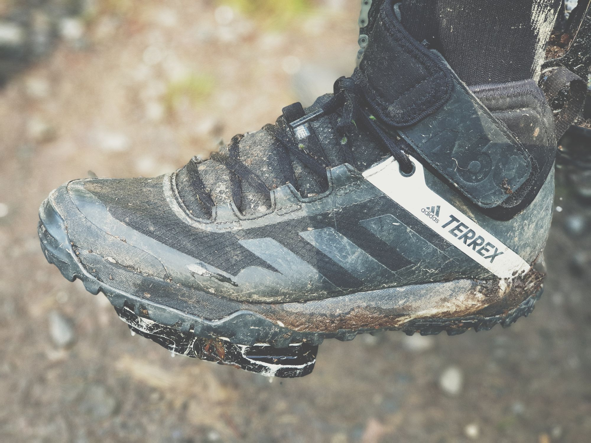 Adidas TERREX Trailcross Protect review